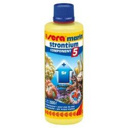Sera Marin COMPONENT 5 Strontium