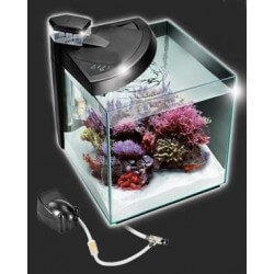 Newa More 30 Reef acquario