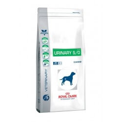 Royal Canin Urinary secco cane