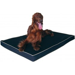 Flair Pet Orthopedic F10+