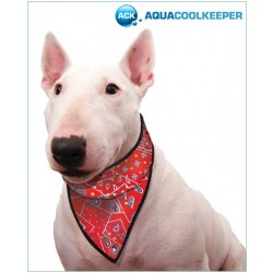 Aqua Coolkeeper Bandana Red Western