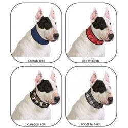 Aqua Coolkeeper Collare Refrigerante per cane PROMO ULTIMI PEZZI