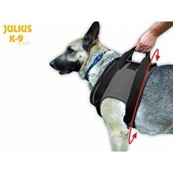 Julius K9 Reabilitation Harnesses FRONT