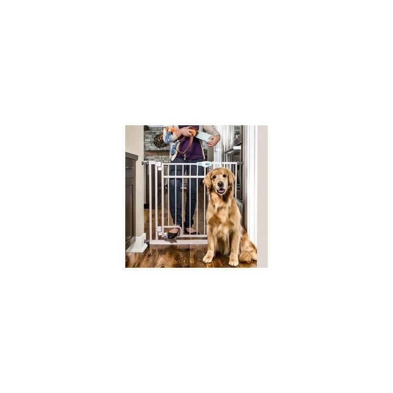 Carlson Hands Free cancelletto per cani
