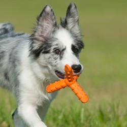 Major Dog - Gioco in Gomma Whirl SMALL