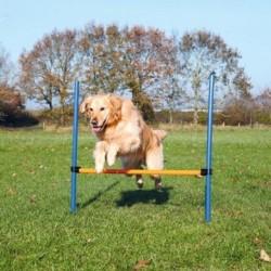 Holland Animal Care Agility Hurdle