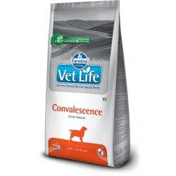 Vet Life Convalescence crocchette dietetiche cane