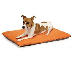 Insect Shield Reversible Dog Bed