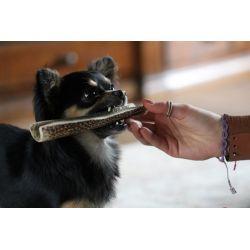 Kau-Stix Corno di Cervo Tagliato 160/250gr - snack cane