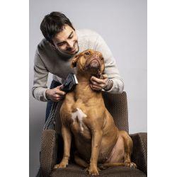 Tubo' Pet Care Kit spazzole aspirapolvere per cani e gatti