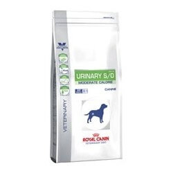 Royal Canin Urinary Moderate Calorie secco cane