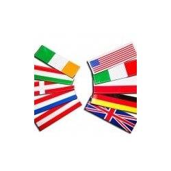 Julius K9 - Coppia Etichette a Velcro ITALIA