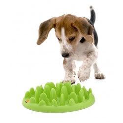 Green Mini Slow Feeder ciotola per cani voraci di piccola taglia