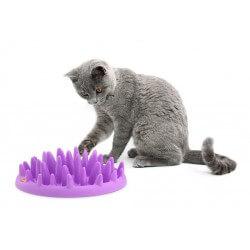 Catch ciotola interattiva per gatti