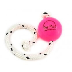 Top Matic Fun Ball PUPPY