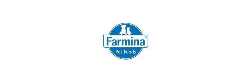 Matisse Farmina alimenti per gatto
