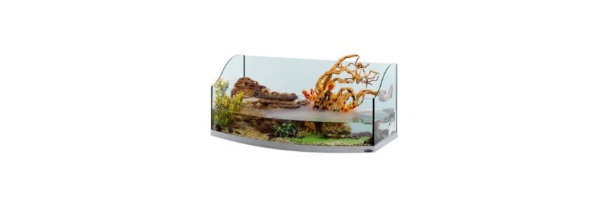 Tartarughiere in vetro Vasche tartarughe