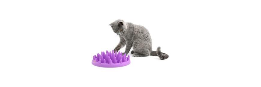 Ciotole Speciali per Gatto